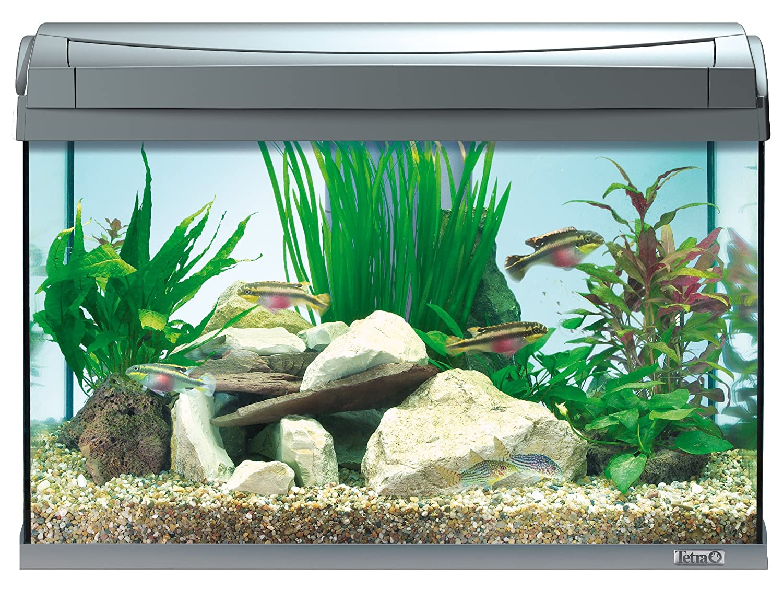 Neu Tetra AquaArt Discovery Line LED Aquarium-Komplett-Set 60 Liter  DB29