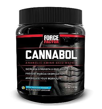 Amazon.com: cannabol BCAA Powder, 6: 1: 1 BCAA Aminoácidos ...
