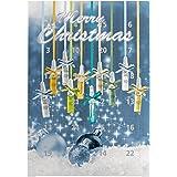Weihnachten Beauty 24 Ampullen Adventskalender Hyaluron Pflege 10 Sorten Serum Kalender Hyaluronsäure Aloe Vera Collagen Augenserum Power Lift Caviar Elixier Weihnachtsgeschenk