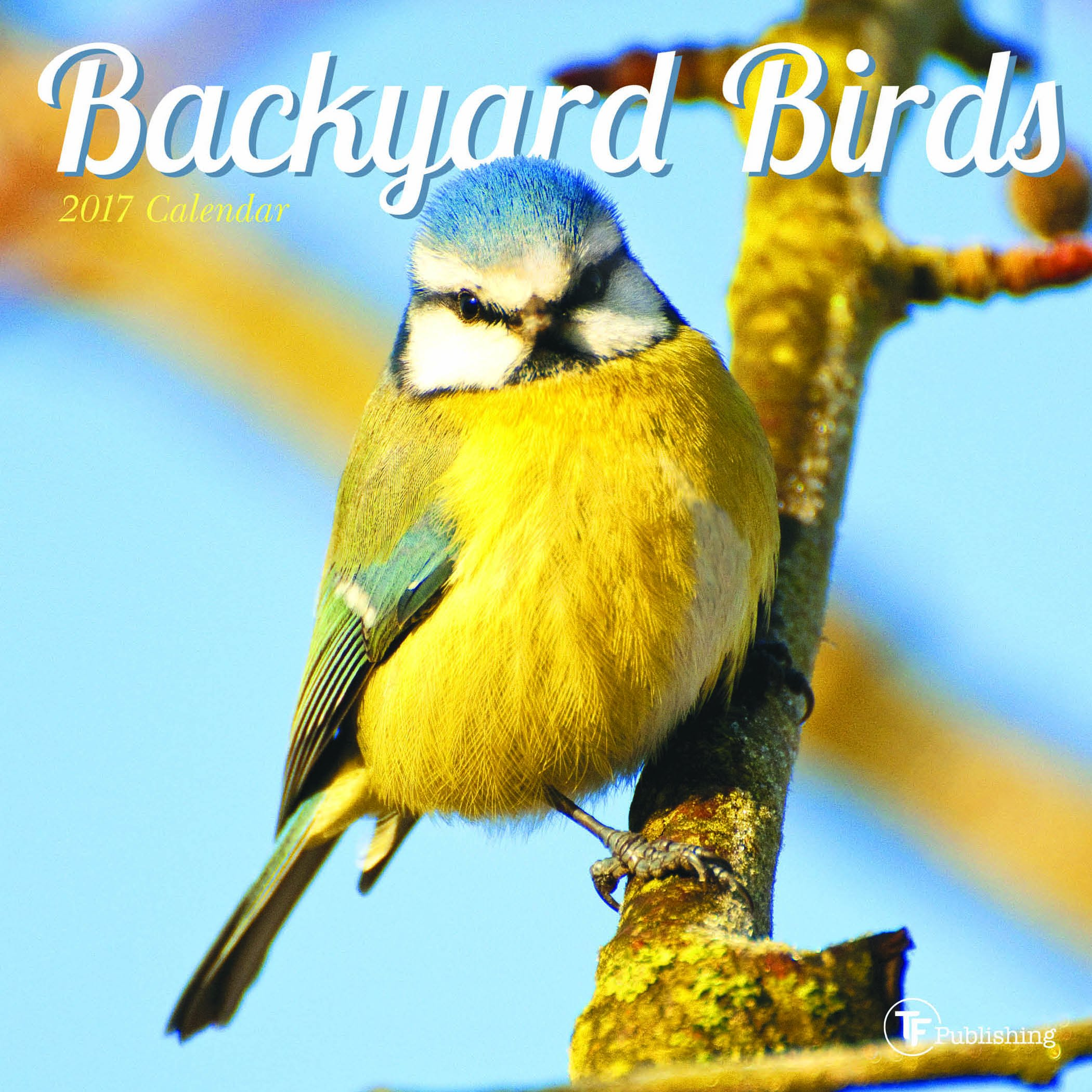 2017 backyard birds mini calendar tf publishing 9781624387593