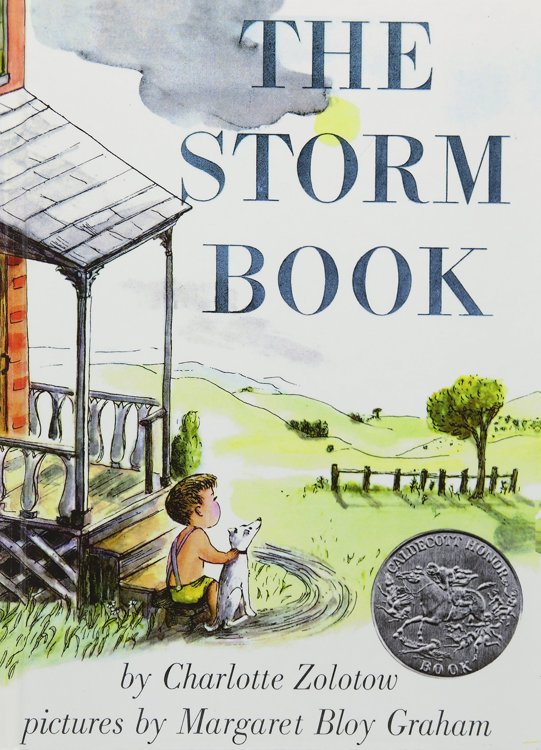 Download The Storm Book pdf