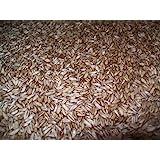 Organic Whole Oat Groats: Raw Hulless Oats, Organic and non GMO Farmer Direct 15 lbs.