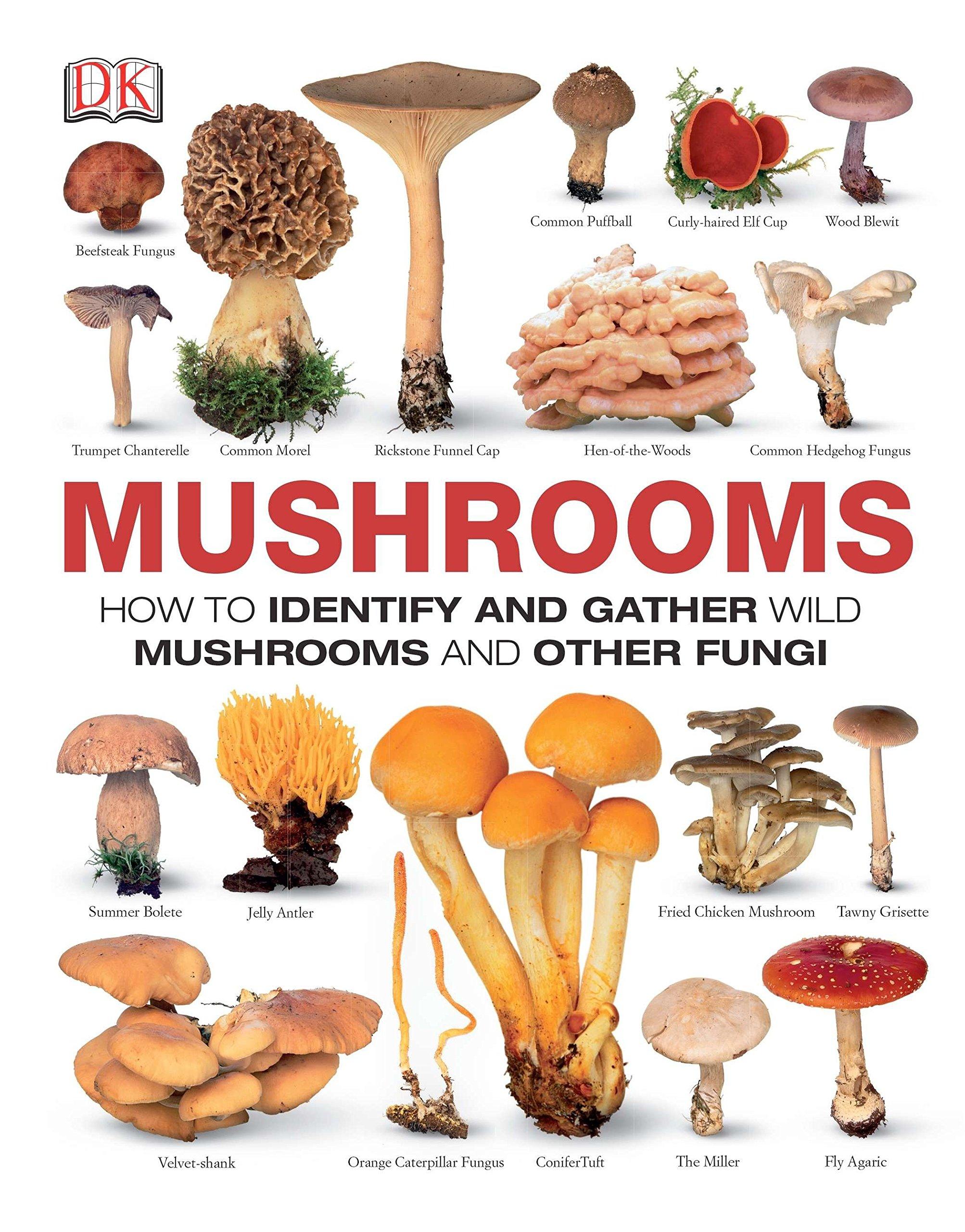 Mushrooms Identify Gather Other Fungi product image