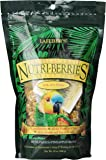 Parrot Tropical Fruit Nutri - berries 10oz