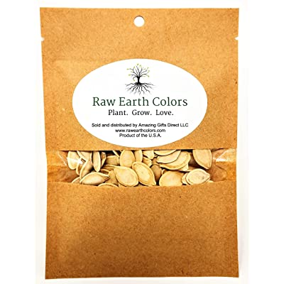 Pumpkin Seeds for Planting - to Plant Connecticut Fields Pumpkins - Large 200 Count Packet! : Garden & Outdoor