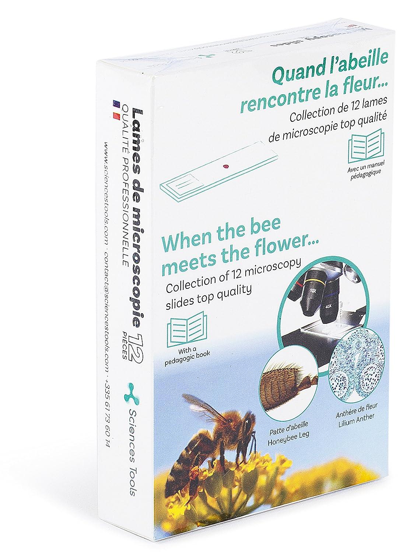 Anglais Sciences Tools Collection Quand labeille Rencontre la Fleur de Lames pr/épar/ées pour Microscope /éducatif pour Enfant et Adulte avec Guide P/édagogique Qualit/é en Verre Fran/çais