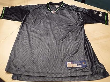 Amazon.com: Seattle Seahawks (Starter) Football Jersey -(Size ...