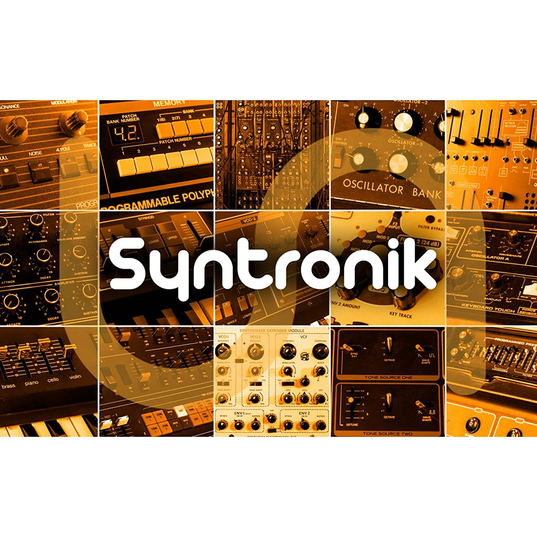 IK Multimedia Syntronik ヴィンテージシンセ音源 IKマルチメディアB075PB1SD7