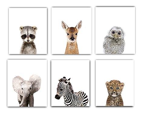 Woodland Nursery Wall Decor   Baby Room Decor Animal,DESIGNS BY MARIA