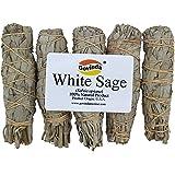 Govinda - Pack of 5 Mini White Sage Smudge Stick, 4 Inch Long