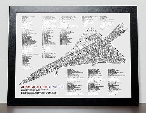 Cartel de la aerolínea Concorde: Amazon.es: Handmade