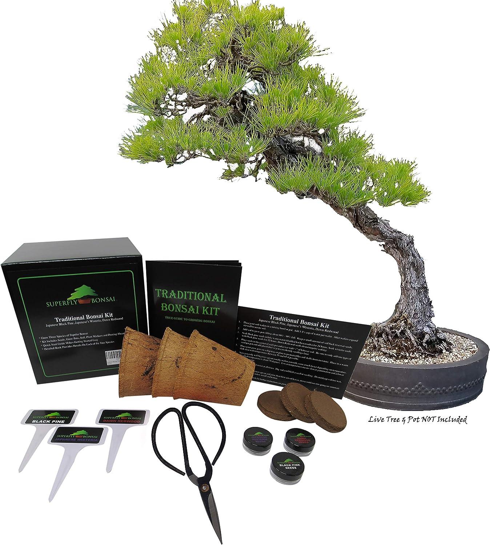Japanese Plastic Bonsai Soil Scoop Bonsai Tree Re Potting and Mixing Tool