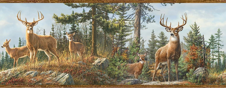 Chesapeake Htm48463b Fern Purple Whitetail Portrait Wallpaper Border Hunting Scents Amazon Com