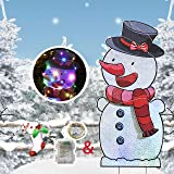 HOME COMPOSER Snowman for Christmas Decorations - 40In Xmas Yard Stake Signs with String Lights- New Year Decor Outdoor for L