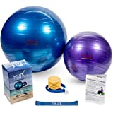 Nilly Yoga & Pilates Exercise Ball Home Gym Kit (4-Piece Set) Incl. 2 Fitness Balls ( Big & Small ) , Air Pump, Resistance Band | Promote Strength, Stability Balance with Low-Impact Support