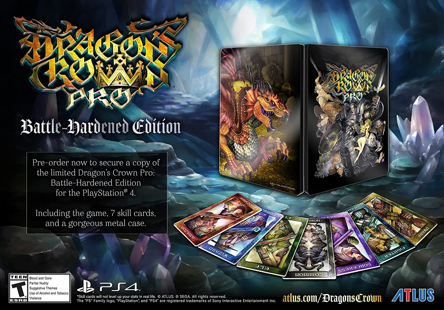 Ps3] dragon's crown limited deluxe edition and dengeki special box.