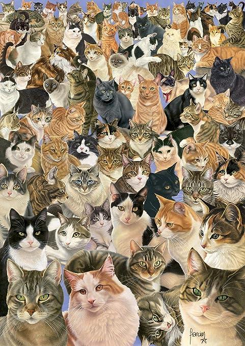 Ravensburger 15522 - Puzzle de 1000 piezas, diseño de collage de gatos