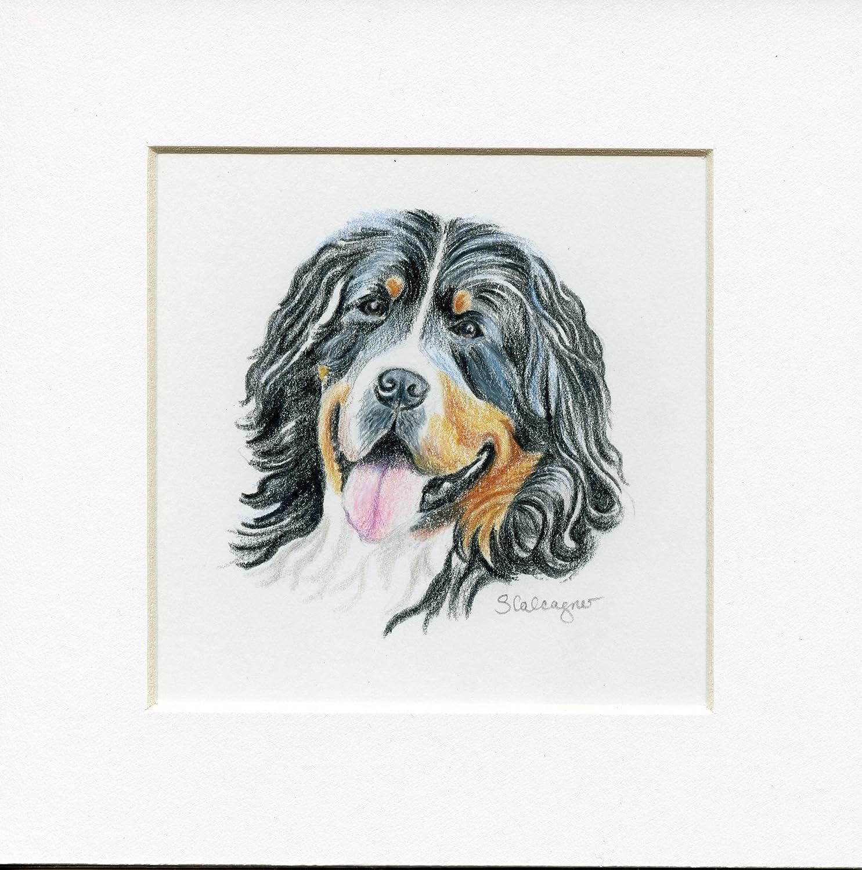 Amazoncom Bernese Mountain Dog Colored Pencil Drawing Handmade