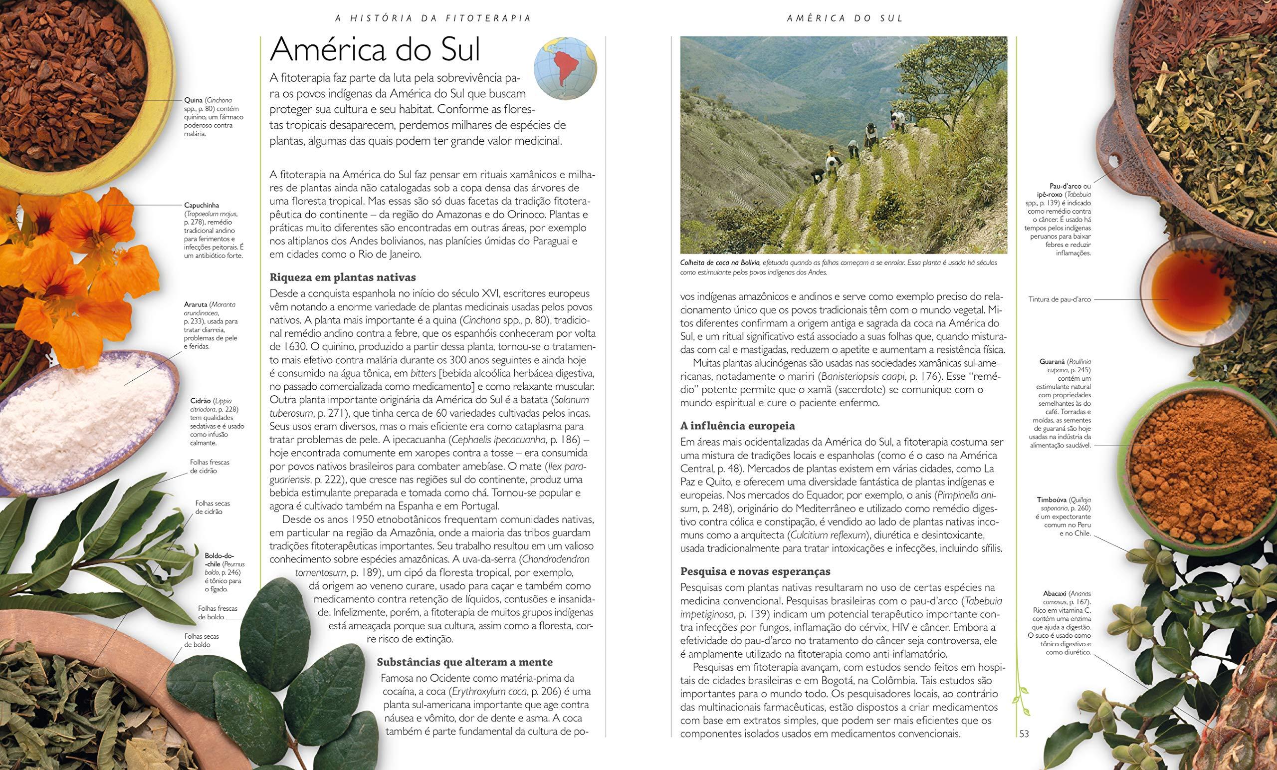 O Grande Livro da Plantas Medicinais (Em Portugues do Brasil ...