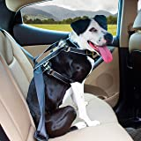 Kurgo Impact Dog Car Harness | Crash Tested Dog Car Harness | Safety Harness for Dogs | Pet Seatbelt Harness | Up to 105 lbs | For Small, Medium, & Large Dogs | Black / Charcoal