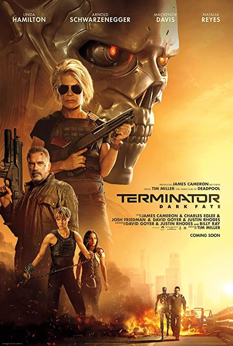 Amazon.com: newhorizon Terminator Dark Fate Movie Poster 14'' x 21'' NOT A  DVD: Posters & Prints