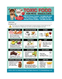 "Enhanced Toxic Foods TRADEMARKED Poison for Pets Dogs Cats Emergency Home Alone 5"" x 7"" Veterinarian Approved Refrigerator Safety Magnet"