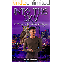 Into the Sky (Tempest Academy Prologue Book 2)