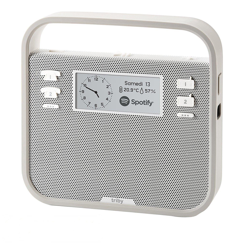 Invoxia Smart Portable Speaker with Amazon Alexa, Grey