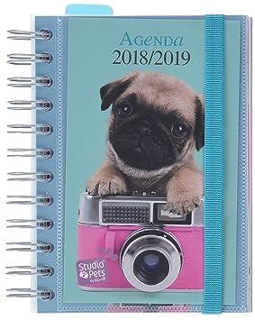 Grupo Erik Editores Studio Pets - Agenda escolar en español con diseño perro, 11.4 x 16 cm