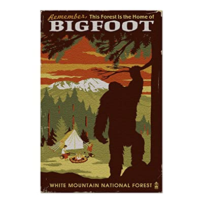 White Mountain National Forest, New Hampshire - Home of Bigfoot 98082 (Premium 1000 Piece Jigsaw Puzzle for Adults, 20x30, Made in USA!): Toys & Games