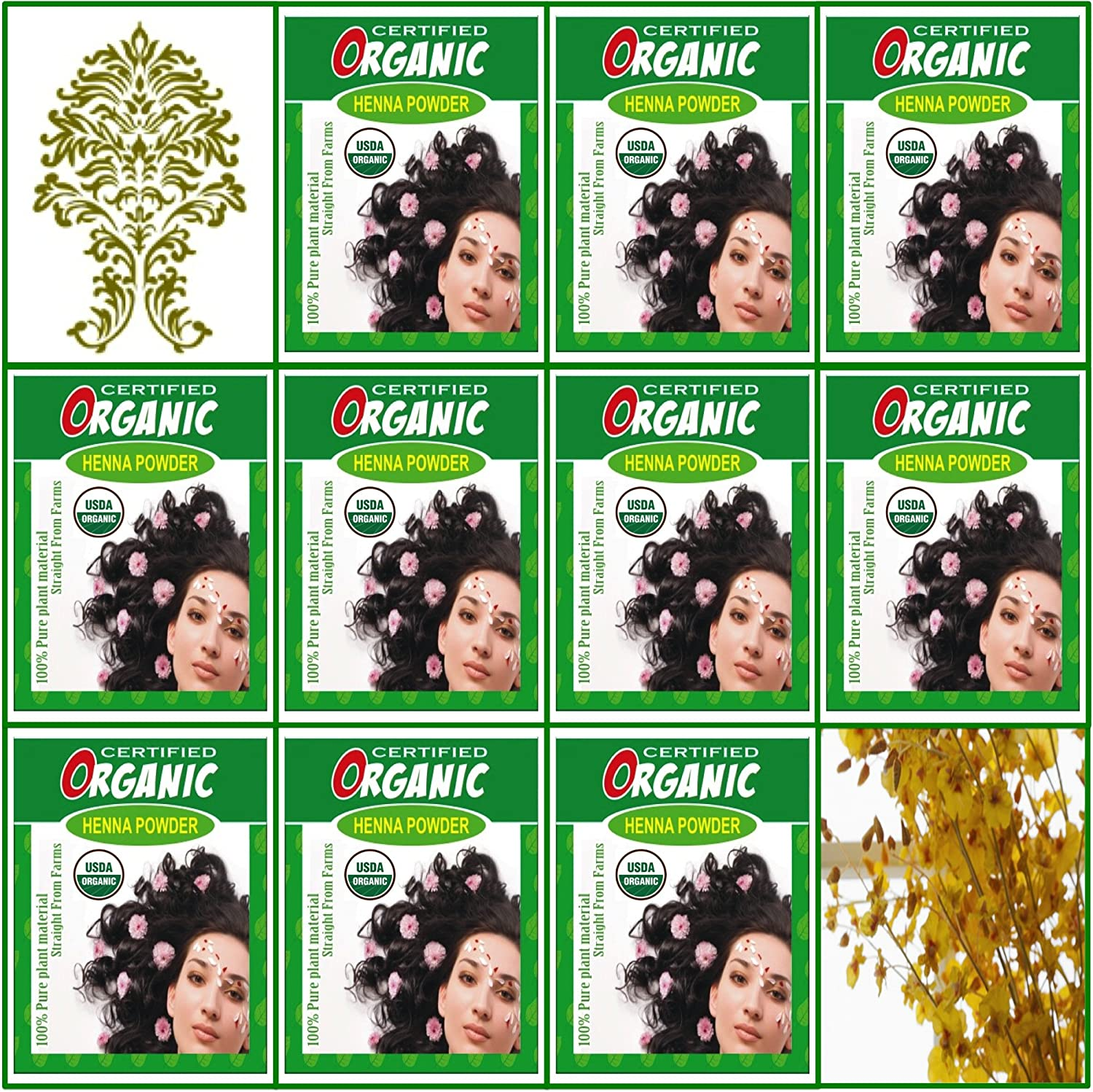 (Qty. 10) 100g Certified Organic Henna Powder for Hair Color Conditioning. Golden Brown Color.