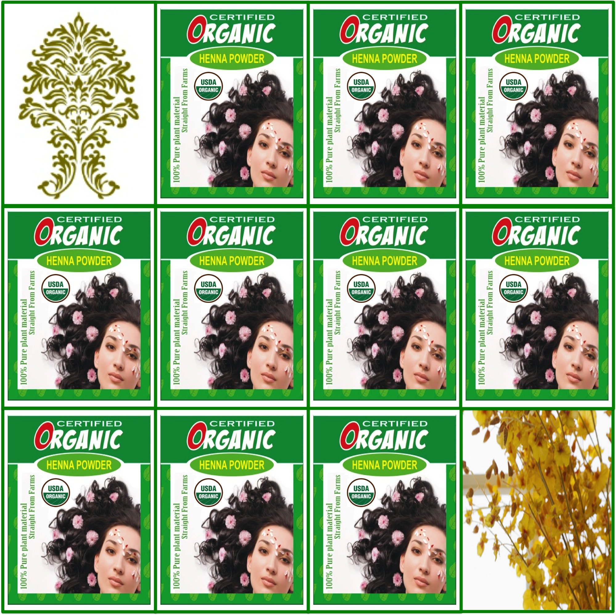 (Qty. 10) 100g Certified Organic Henna Powder for Hair Color Conditioning. Golden Brown Color. by GaneshaSpice