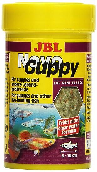 JBL NovoGuppy - Comida para Peces, 21 g: Amazon.es: Productos para mascotas
