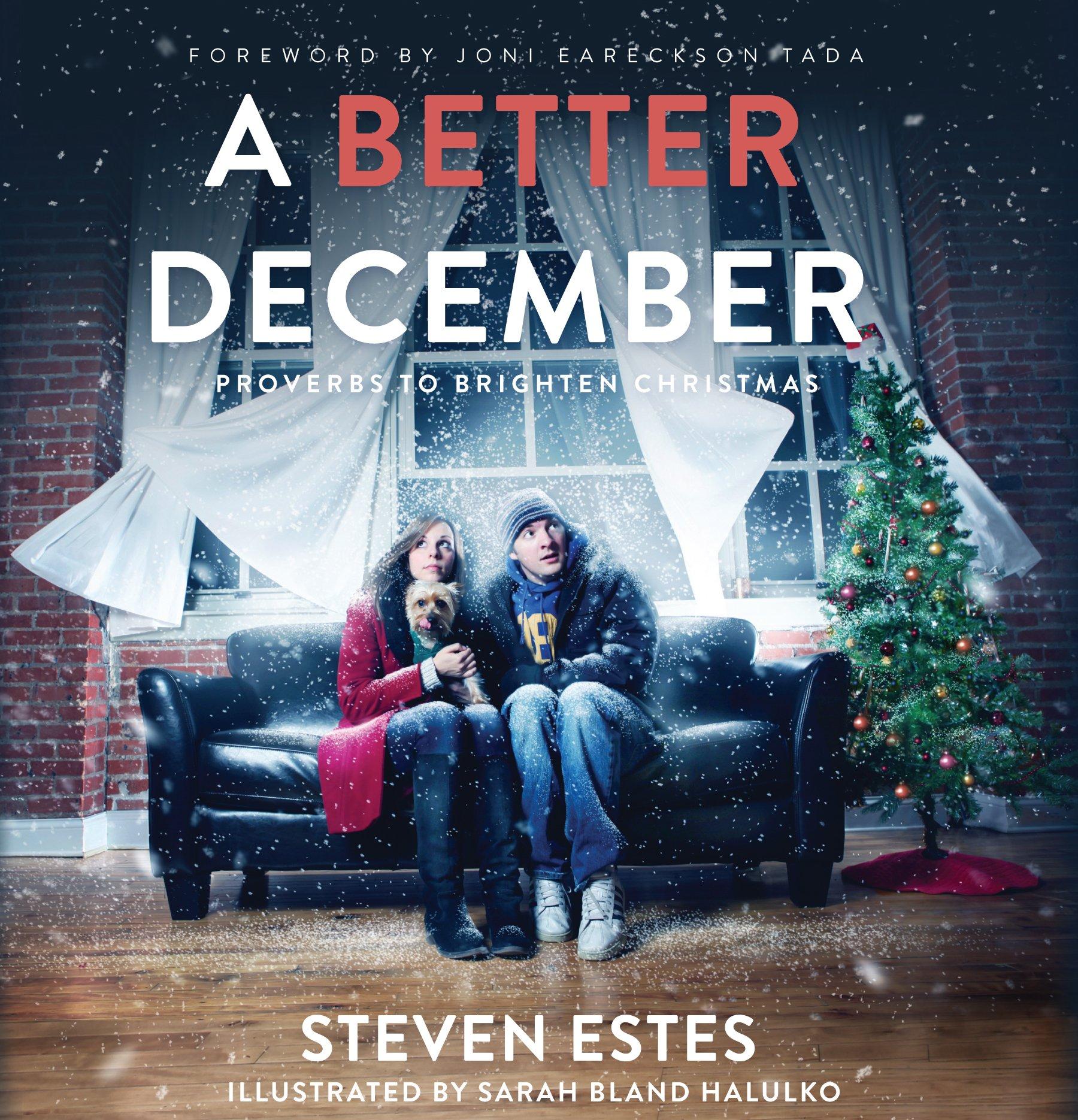 A Better December {A Book Review}