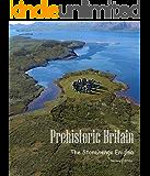 The Stonehenge Enigma (Prehistoric Britain Book 1)