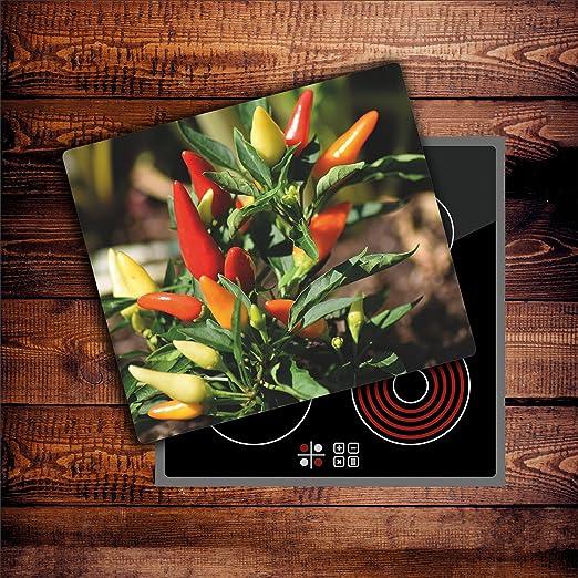 Compra Damu | planchas protectoras para cocina (cristal ...
