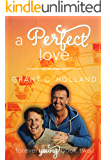 A Perfect Love: Forever Young, Book 2