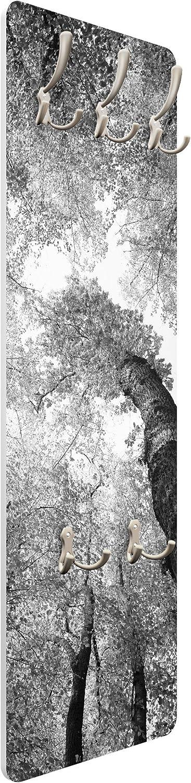 Appendiabiti da Muro Trees of Life II 139x46x2cm Dimensione: 139cm x 46cm Appendiabiti da Parete Bilderwelten Appendiabiti Appendiabiti a Muro Appendiabiti Design