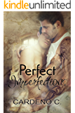 Perfect Imperfections: A Rock Star Contemporary Gay Romance (English Edition)