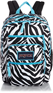 Amazon.com: Jansport Blue and Black Zebra Stripe Superbreak ...