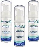 Hands2GO Alcohol-free Natural Hand Sanitizer (3 Foaming 1.7oz bottles)