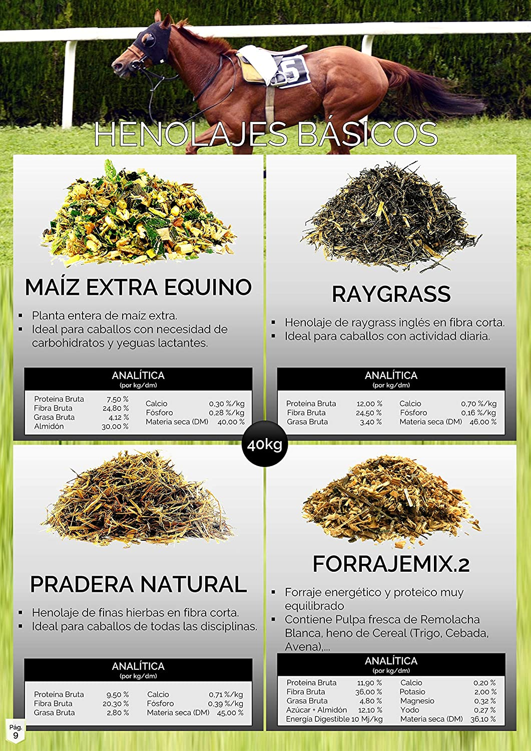 Caleya Forrajes Pack Ahorro: 36 uds Raygrass Extra Equino 30 ...