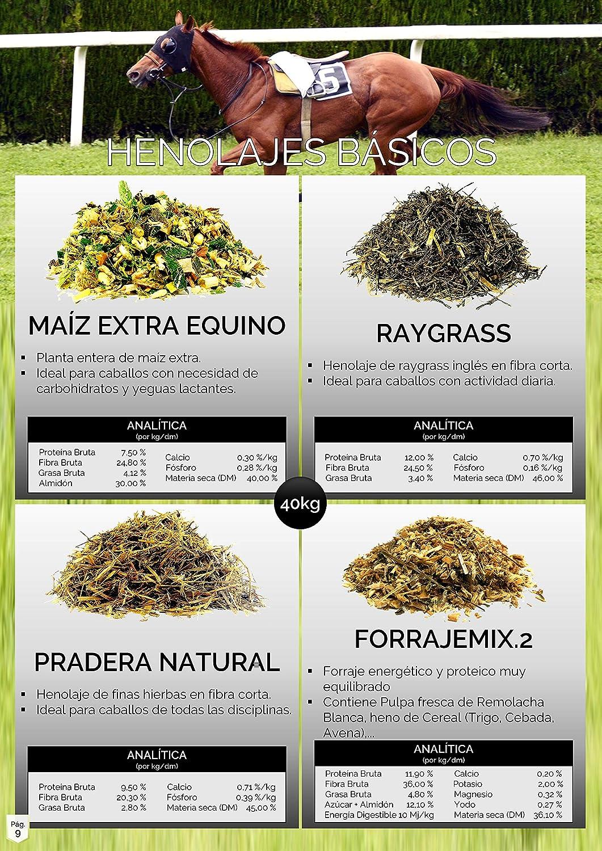 Caleya Forrajes Pack Ahorro: 30 uds Maíz Extra Equino 40 kg: Amazon.es: Productos para mascotas