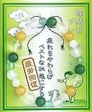 【神々の集う出雲より】縁結びブレスレット[レディース] ~健康(疲労回復)~【アベンチュリン・フローライト・アラゴナイト・ホワイトメノウ】