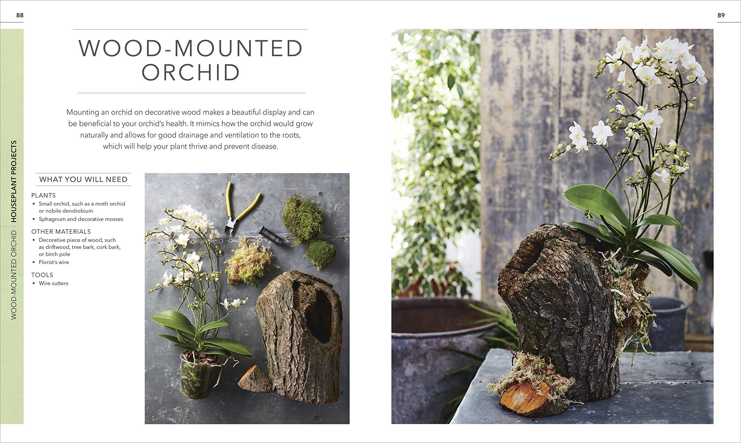 sumptuous design ideas green house plant identification. Practical Houseplant Book  Zia Allaway Fran Bailey 9781465469212 Amazon com Books