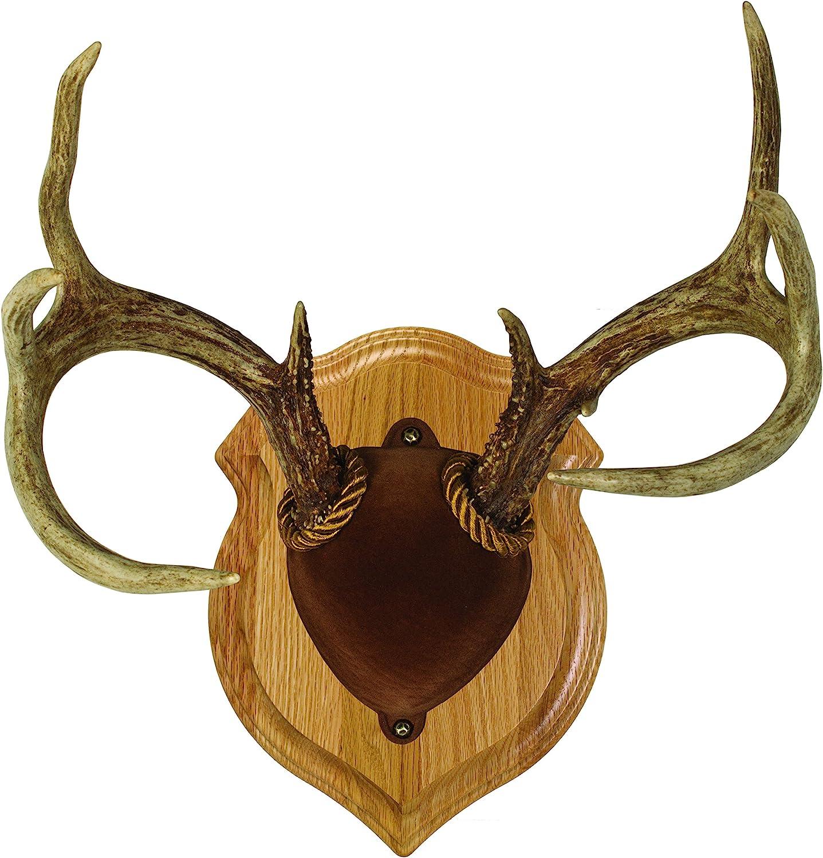 Allen Heirloom Mounting Plaque Whitetail Mule Deer Antelope 569 for sale online