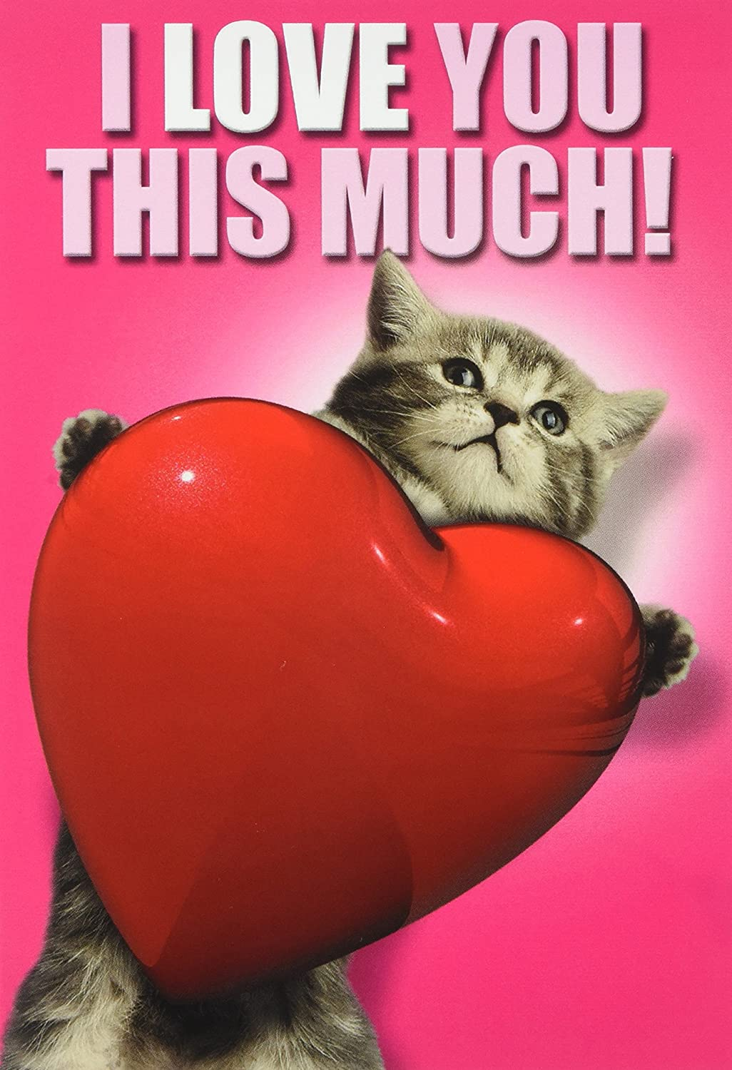 NobleWorks C1644VDG ''Love You This Much Cat'' Funny Valentine's Day Unique Greeting Card, 5