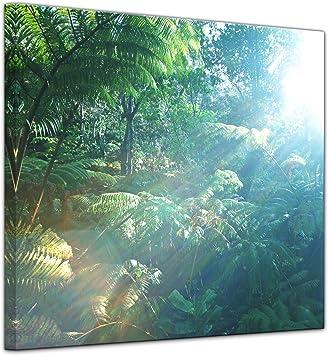 Bilderdepot24 Cuadros en Lienzo Selva Tropical en Hawai - 20 x 20 cm - Listo tensa, Directamente Desde el Fabricante: Amazon.es: Hogar