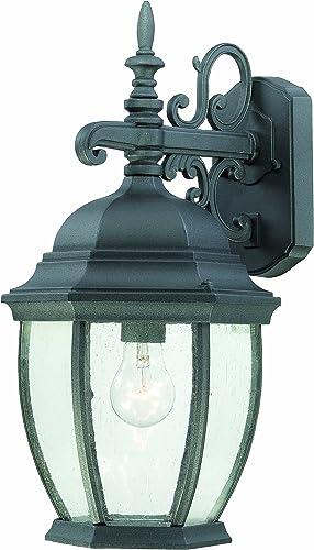 Thomas Lighting SL92297 Covington Outdoor Wall Lantern, Black