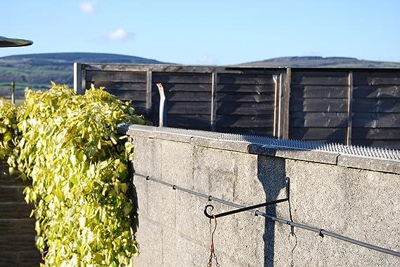 5 Meter Braun Mauer Zaun Dornen Anti-aufstieg Sicherheit Katze VogelAbwehr